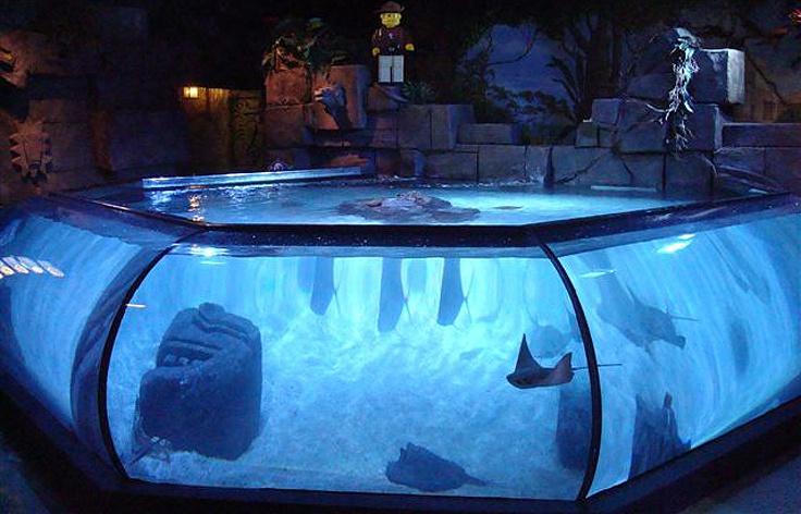sealife aquarium california elliott