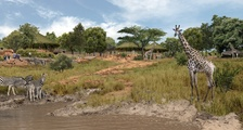 New African Savannah Zoo exhibit achieves planning